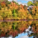 Autumn-Impression