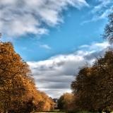 Autumn-Pallet